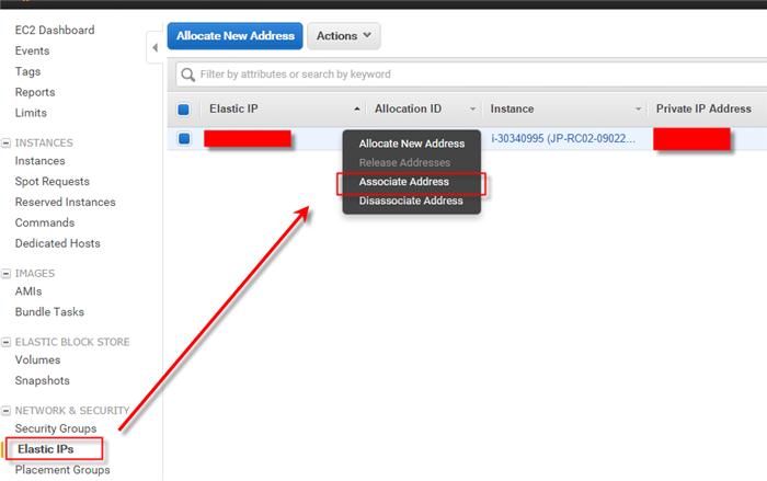 AWS Elastic IPs
