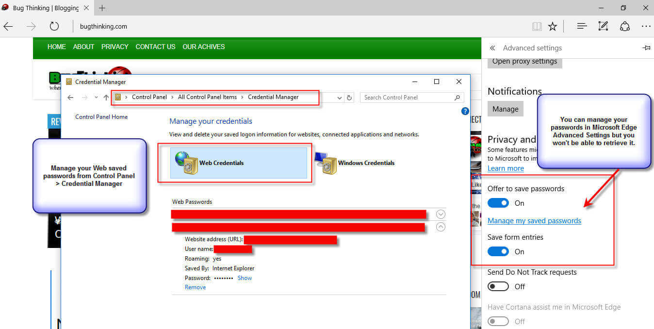 Microsoft Edge Retrieve Saved Passwords