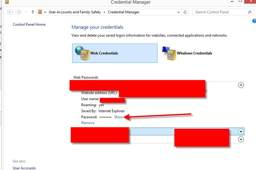 Retrieved Saved Password in Microsoft Internet Explorer 06