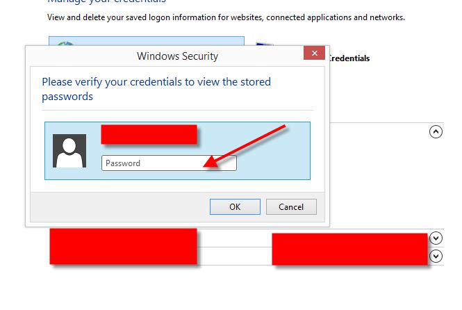 Retrieved Saved Password in Microsoft Internet Explorer 07